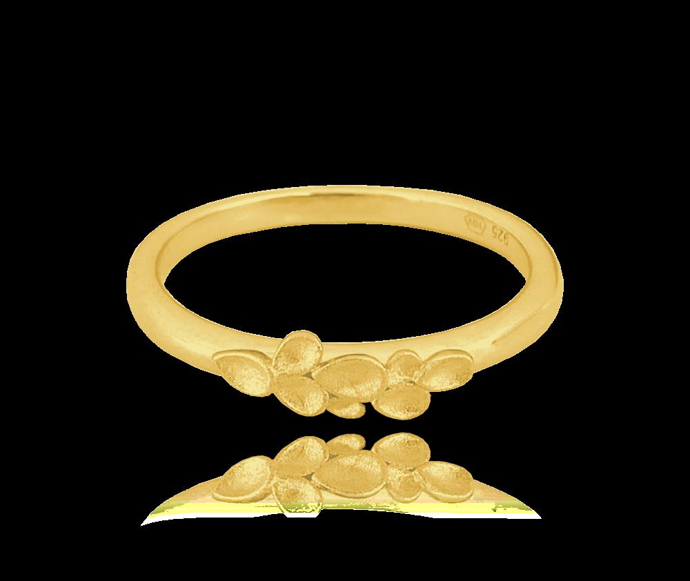 Matný pozlacený stříbrný prsten MINET EUCALYPTUS vel. 52
