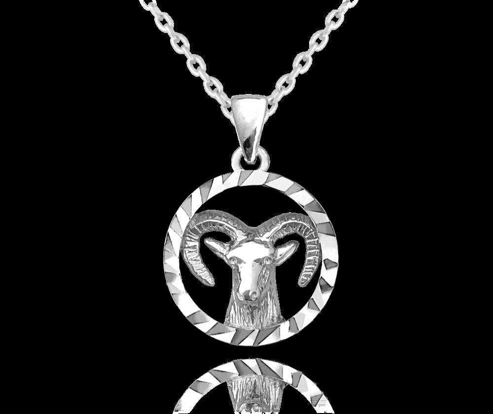 MINET Stříbrný náhrdelník MINET Zodiac znamení KOZOROH JMAS9401SN45